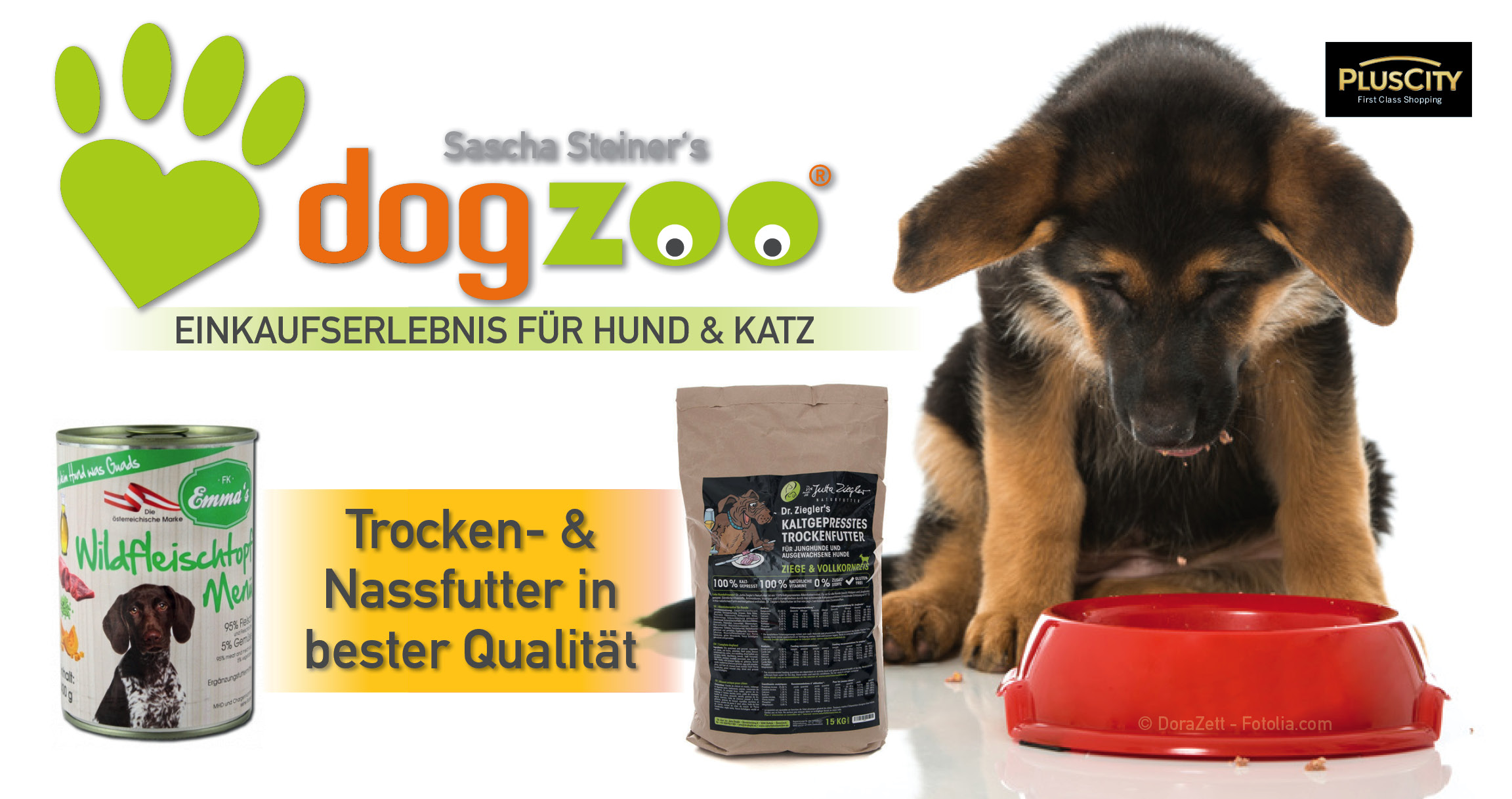 DogZoo